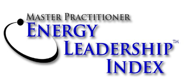 Master Practitioner - Energy Leadership Index